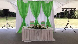 Украшение на свадьбу в фисташковом цвете цены