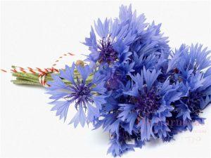 Украшение свадеб в голубом цвете фото